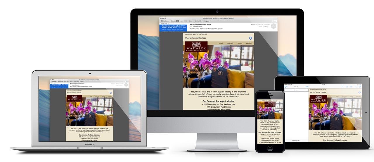warwick-responsive-email-design