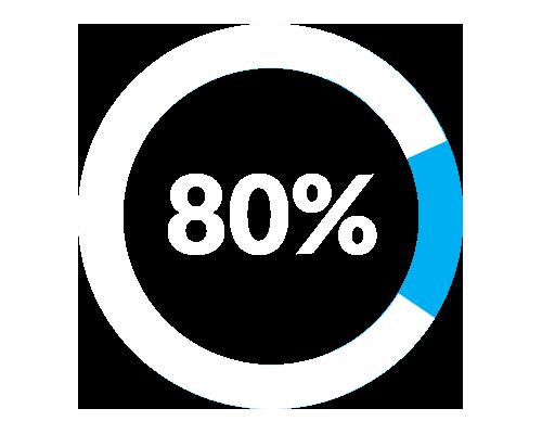 80% Circle Chart