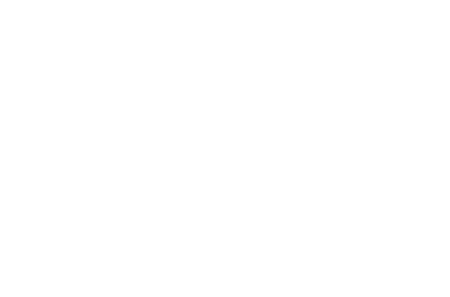Travel Agent Influence
